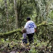 Ecuatea Guayusa Planting3