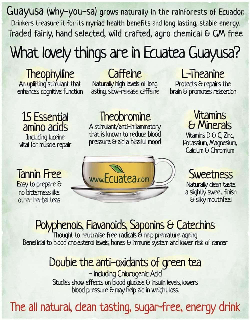 guayusa-info